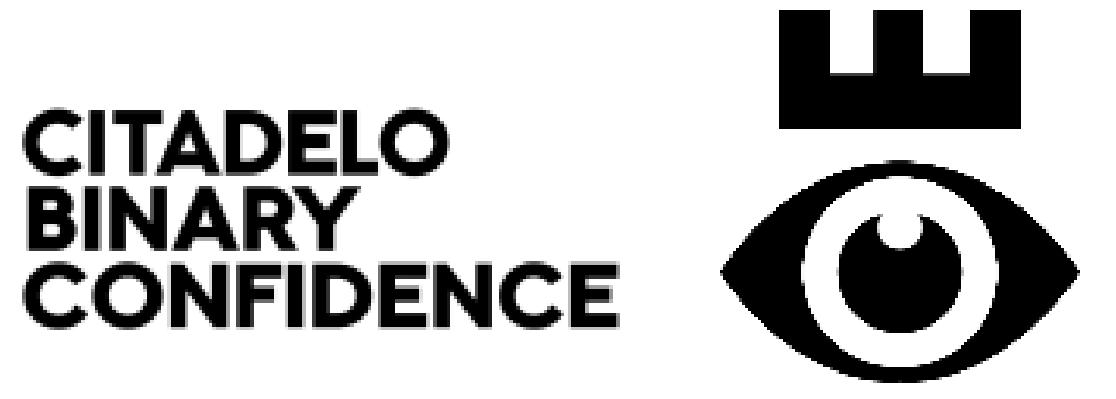 citadelo binary confidence